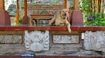 bali ubud king palace