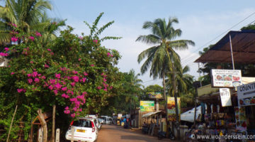 Goa – Anjuna Beach