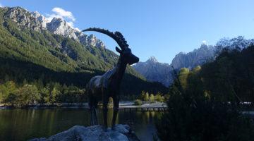 Frische Bergluft bei Kranjska Gora & den Julischen Alpen
