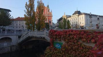 Zu Besuch bei den Drachen von Ljubljana in Sloweniens Hauptstadt