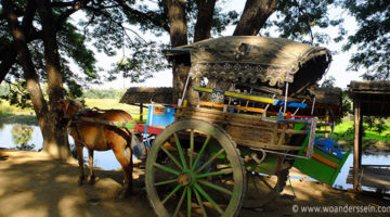 mandalay tour bagaya kyaung horsecar