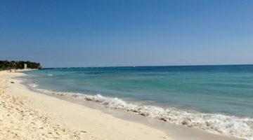 Die besten Seafood Tacos in Playa del Carmen