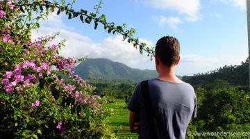 Von Ubud ins noch grünere und ruhigere Sidemen