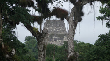 Tikal National Park, Maya Ruinen mitten im Regenwald