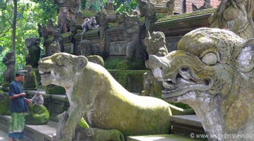 Der Monkey Forest in Ubud (Achtung Affen!)